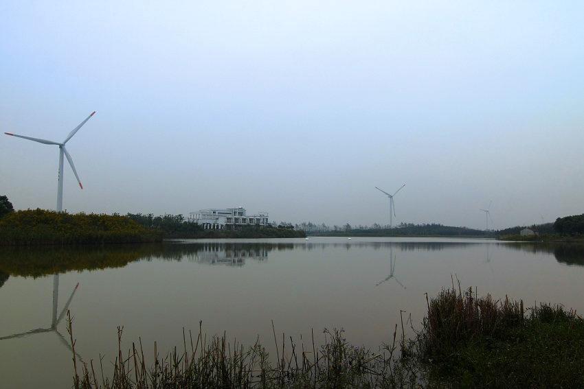 上海滨海森林公园门票团购