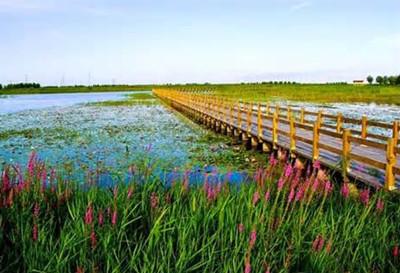 杭州湾湿地公园门票团购