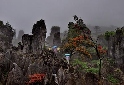 华蓥山门票团购_华蓥山网上订票_广安周边旅游景点
