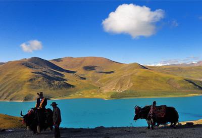 羊卓雍错湖