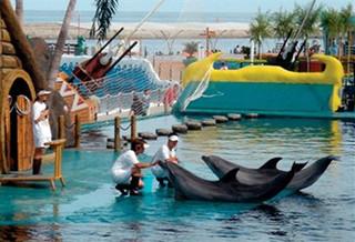 山海关乐岛海洋公园