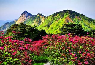 麻城龟峰山