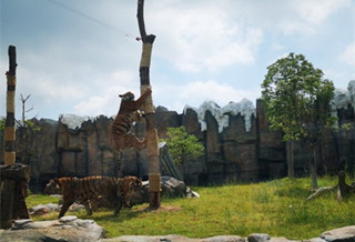 福清野生动物园